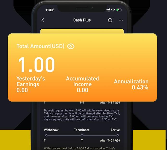 Introduction to Cash Plus
